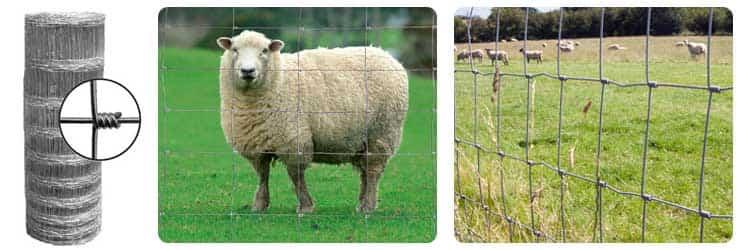 field fence mesh